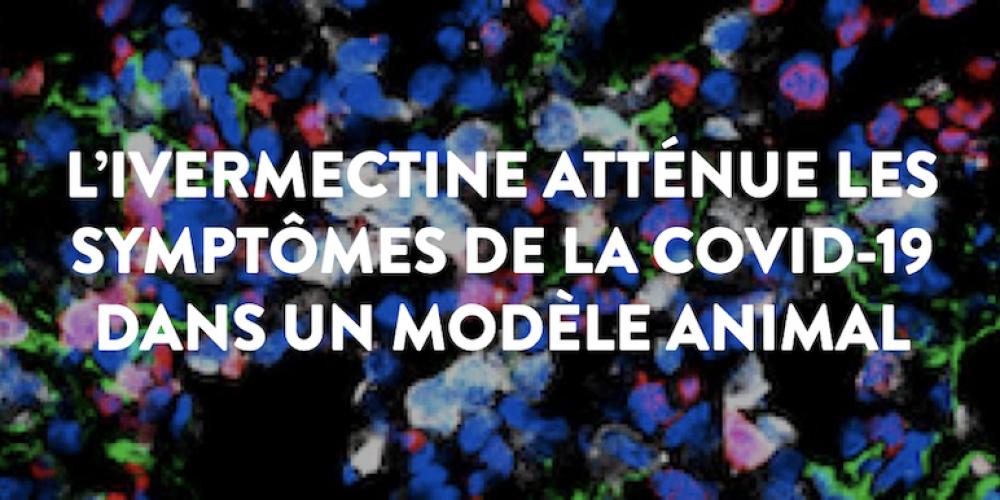 L'ivermectine validée par l'Institut Pasteur ?