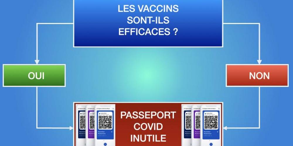 «Que le vaccin fonctionne ou non, le passe est inutile»